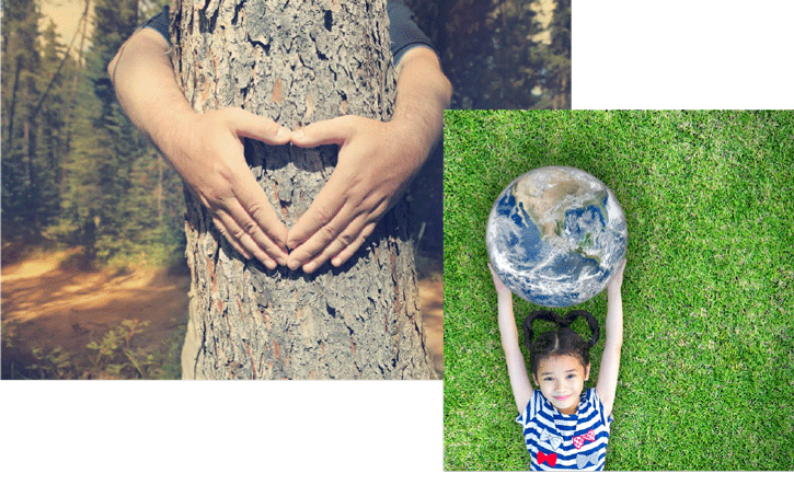 cuidamos-el-medio-ambiente